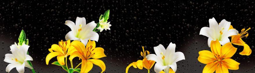 Изображение для стеклянного кухонного фартука, скинали: цветы, лилии, skin114