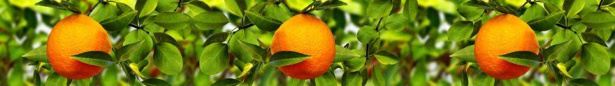 Изображение для стеклянного кухонного фартука, скинали: листья, фрукты, апельсины, skin129