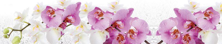 Изображение для стеклянного кухонного фартука, скинали: цветы, орхидеи, skin142