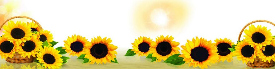 Изображение для стеклянного кухонного фартука, скинали: цветы, подсолнухи, корзина, skin148