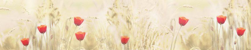 Изображение для стеклянного кухонного фартука, скинали: цветы, тюльпаны, пшеница, skin157