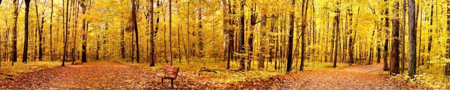 Изображение для стеклянного кухонного фартука, скинали: природа, деревья, лес, осень, skin174