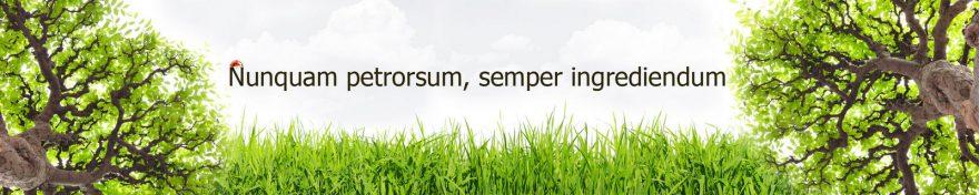 Изображение для стеклянного кухонного фартука, скинали: трава, деревья, буквы, skin194