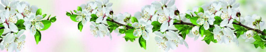 Изображение для стеклянного кухонного фартука, скинали: цветы, яблоня, ветки, skin232