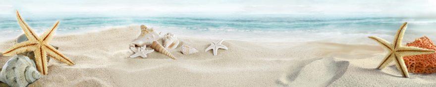 Изображение для стеклянного кухонного фартука, скинали: море, ракушки, песок, skin289