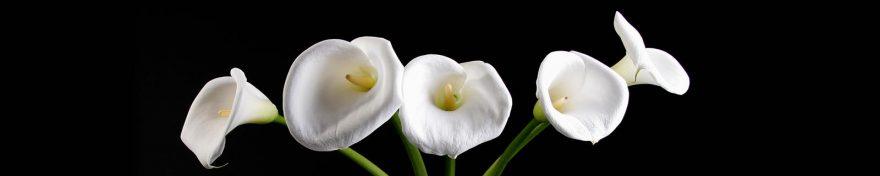 Изображение для стеклянного кухонного фартука, скинали: цветы, каллы, skin355