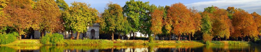 Изображение для стеклянного кухонного фартука, скинали: природа, деревья, озеро, осень, skin364