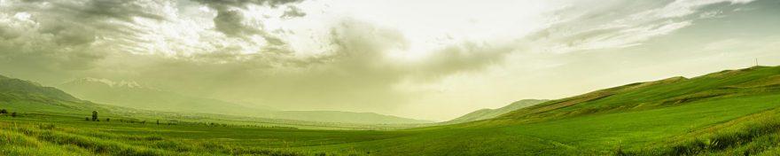 Изображение для стеклянного кухонного фартука, скинали: поле, природа, небо, skin366