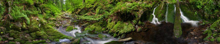 Изображение для стеклянного кухонного фартука, скинали: природа, лес, река, skin394