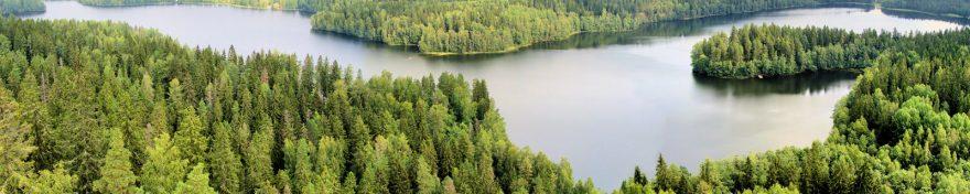 Изображение для стеклянного кухонного фартука, скинали: природа, лес, река, skin396