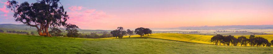 Изображение для стеклянного кухонного фартука, скинали: закат, поле, природа, деревья, skin397