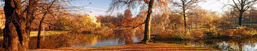 Изображение для стеклянного кухонного фартука, скинали: деревья, осень, река, skin399