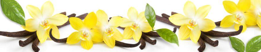Изображение для стеклянного кухонного фартука, скинали: цветы, ваниль, skin442