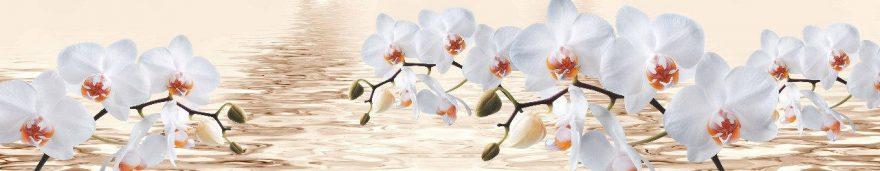 Изображение для стеклянного кухонного фартука, скинали: цветы, орхидеи, skin483