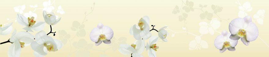 Изображение для стеклянного кухонного фартука, скинали: цветы, орхидеи, skin508