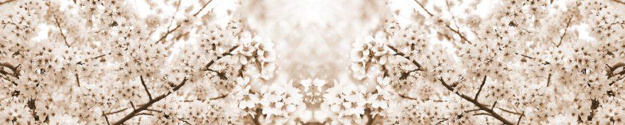 Изображение для стеклянного кухонного фартука, скинали: цветы, ветки, сакура, skin77