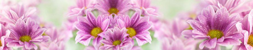 Изображение для стеклянного кухонного фартука, скинали: цветы, роса, skin89