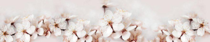 Изображение для стеклянного кухонного фартука, скинали: цветы, яблоня, skin90