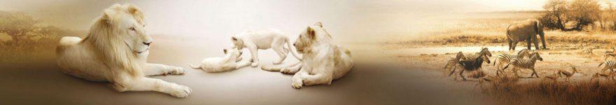 Изображение для стеклянного кухонного фартука, скинали: животные, саванна, skinap122