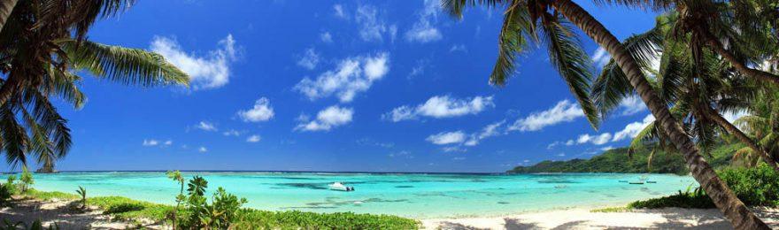 Изображение для стеклянного кухонного фартука, скинали: небо, море, пальмы, skinap127
