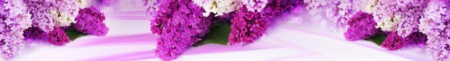 Изображение для стеклянного кухонного фартука, скинали: цветы, сирень, skinap129