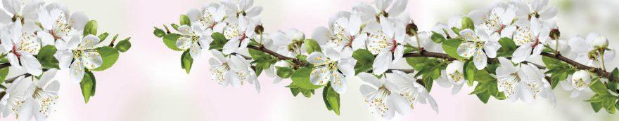 Изображение для стеклянного кухонного фартука, скинали: цветы, яблоня, ветки, skinap135
