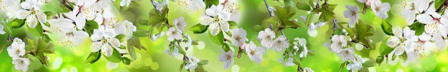 Изображение для стеклянного кухонного фартука, скинали: цветы, яблоня, ветки, skinap143