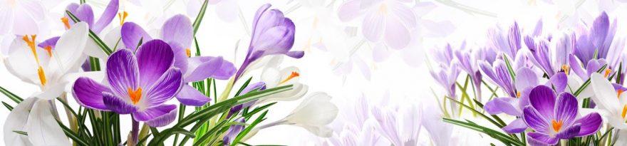 Изображение для стеклянного кухонного фартука, скинали: цветы, крокусы, skinap145