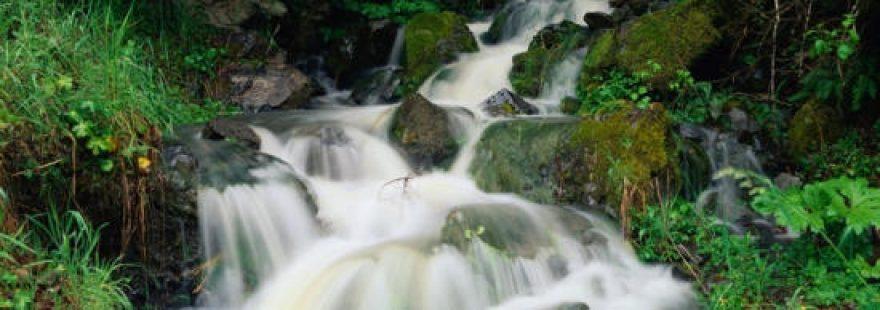 Изображение для стеклянного кухонного фартука, скинали: природа, трава, водопад, skinap14