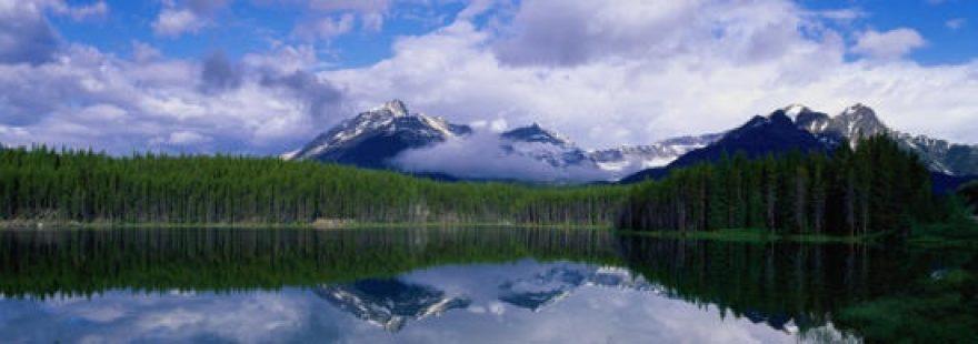 Изображение для стеклянного кухонного фартука, скинали: лес, горы, озеро, skinap1