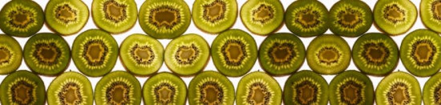 Изображение для стеклянного кухонного фартука, скинали: фрукты, киви, skinap31