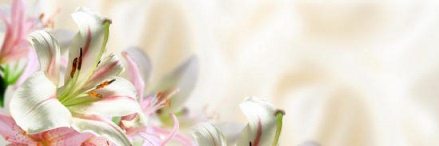 Изображение для стеклянного кухонного фартука, скинали: цветы, лилии, skinap36