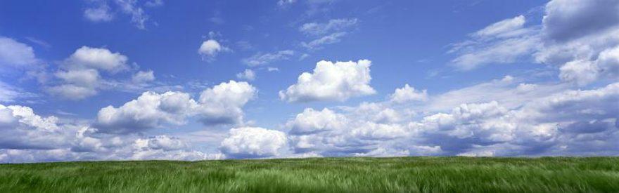 Изображение для стеклянного кухонного фартука, скинали: поле, природа, трава, небо, облака, skinfil11