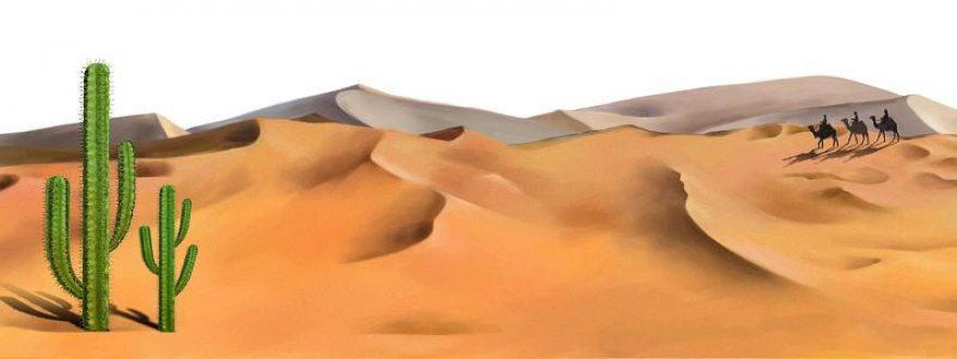 Изображение для стеклянного кухонного фартука, скинали: кактусы, пустыня, верблюды, skinsty6