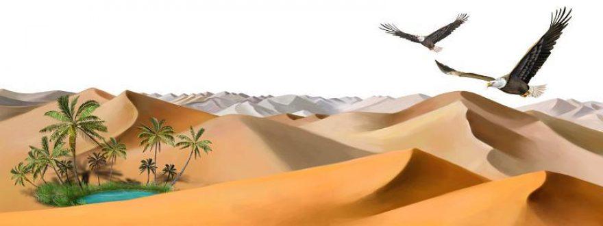 Изображение для стеклянного кухонного фартука, скинали: пальмы, птицы, пустыня, оазис, skinsty7