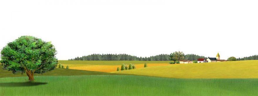Изображение для стеклянного кухонного фартука, скинали: поле, природа, деревья, дом, skinsty8