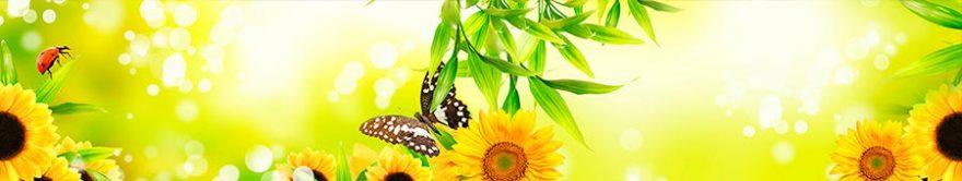 Изображение для стеклянного кухонного фартука, скинали: цветы, подсолнухи, бабочки, fartux1351