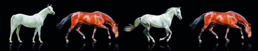 Изображение для стеклянного кухонного фартука, скинали: животные, лошади, fartux660