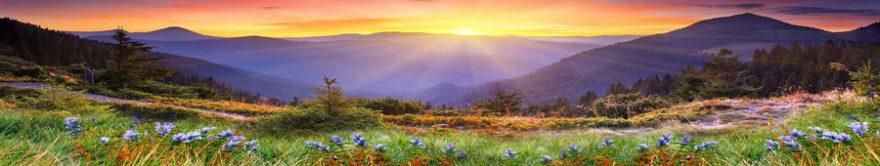 Изображение для стеклянного кухонного фартука, скинали: цветы, поле, природа, горы, fartux743