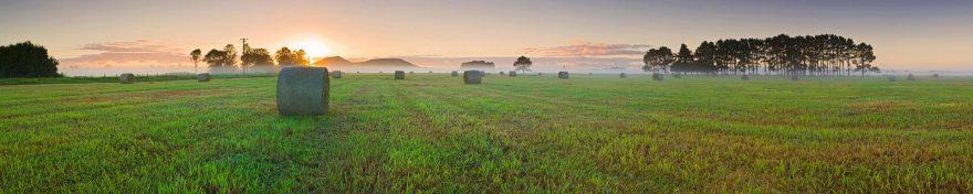 Изображение для стеклянного кухонного фартука, скинали: закат, поле, восход, природа, polholm001