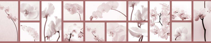 Изображение для стеклянного кухонного фартука, скинали: цветы, орхидеи, коллаж, rastcve065