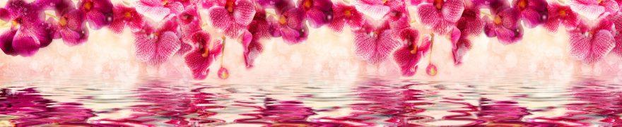 Изображение для стеклянного кухонного фартука, скинали: цветы, орхидеи, rastcve075
