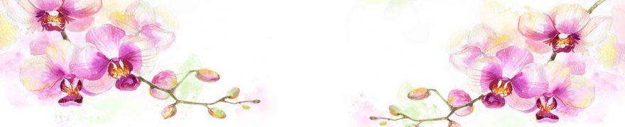 Изображение для стеклянного кухонного фартука, скинали: цветы, орхидеи, rastcve084