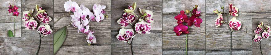 Изображение для стеклянного кухонного фартука, скинали: цветы, орхидеи, коллаж, rastcve086