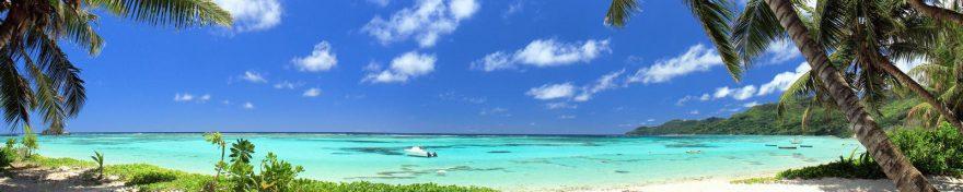 Изображение для стеклянного кухонного фартука, скинали: небо, море, пальмы, skin280